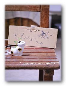 DSC_0018-s.jpg